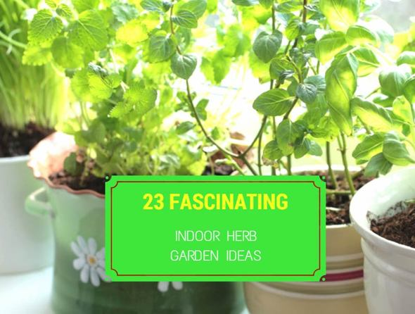 23 Fascinating Indoor Herb Garden Ideas | Garden Europe