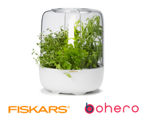 Fiskars KitchenGarden - herb garden kit